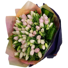 100pcs Holland Tulips Bouquet Valentines Day
