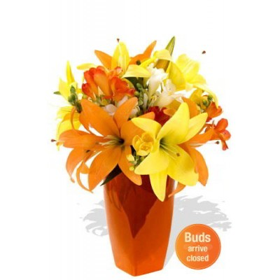 Mixed Asiatic and Freesia Bouquet ,6 Lily and 3 Freesia